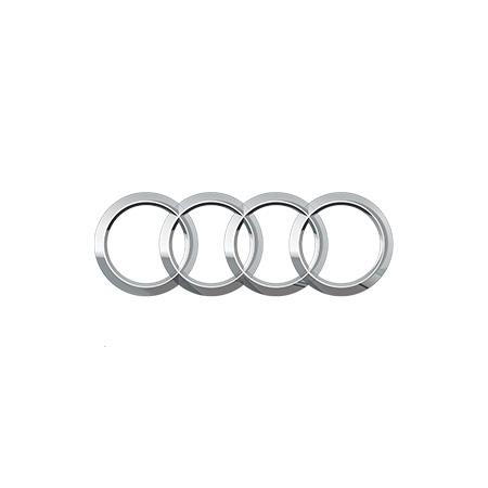 Chip Tuning Audi