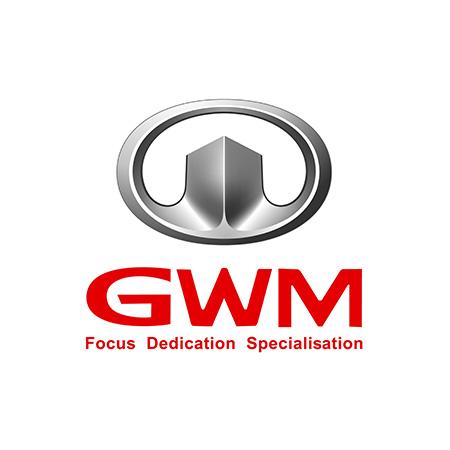 Chip Tuning GWM